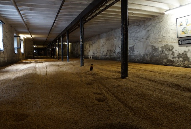 062113 Orkneys Mainland - HighLand Park Distillery The Malting Room where Barley is spread out and allowed to germinate