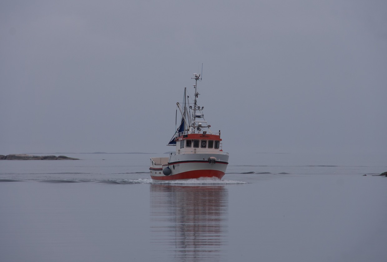 140725 Fishing boat returning Little Aursoya