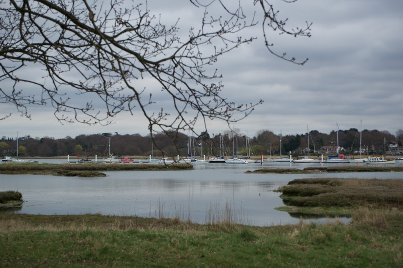 150402 2 Walking the Hamble Common