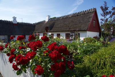 150715 9 Gilleleje Beautiful House and Gardens.jpg