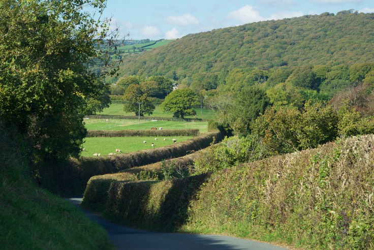 151013 8 Drive day to Dartmoor National Park Laneways.jpg